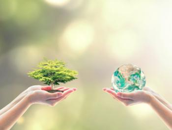 تقرير الاستدامة